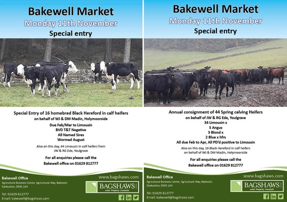 Bakewell Market Special Entires on Monday 11th November