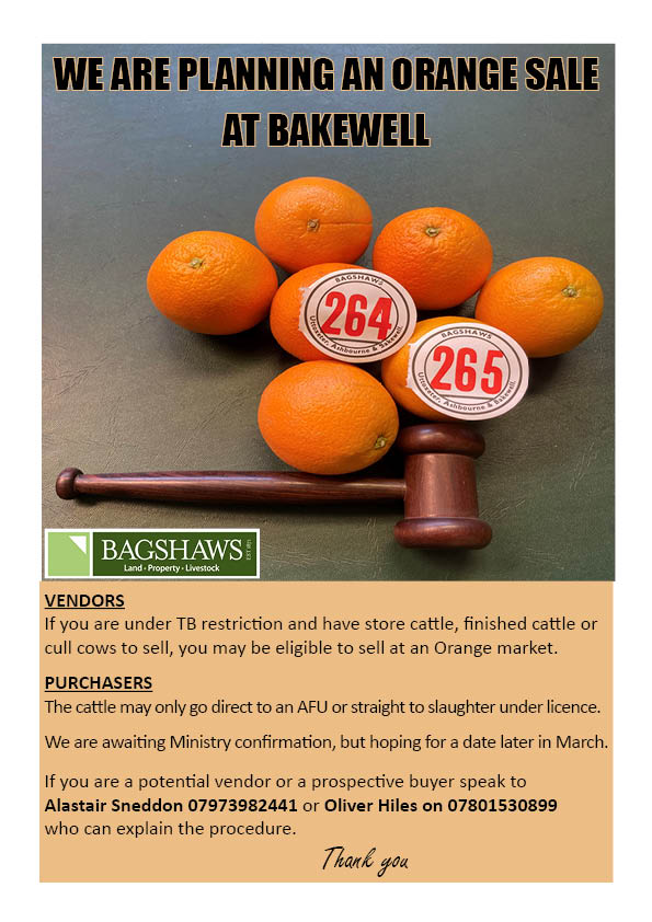 BAKEWELL MARKET 'ORANGE SALE'
