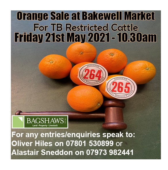 Bakewell Market Update – 21st May 2021